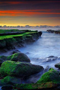 ✯ Sunrise at Mossy Beach - #Sydney, #Australia http://www.travelmagma.com/australia/things-to-do-in-sydney/