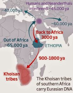 Map: Humanity's forgotten return to Africa revealed in DNA