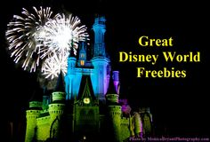 Disney World Tips & Tricks / Free - Subscribe to this unofficial Disney-focused e-newsletter and get a 4-part series of really helpful Disney vacation planning articles, including a list of 45 great Disney World freebies - http://www.buildabettermousetrip.com/disney-freebies/
