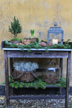 Sidetable garden I wintertable I - Christmas İdeas Christmas Garden, Christmas Porch, Noel Christmas, Outdoor Christmas, Rustic Christmas, Christmas Crafts, Christmas Decorations, Holiday Decor, Navidad Natural