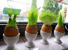 """If you love juicing wheat grass, why not try growing it in these creative """"planters"""" made from egg shells. Kids Crafts, Easter Crafts, Easter Ideas, Thanksgiving Crafts, Easter Decor, Easter Gift, Egg Shell Planters, Diy Planters, Diy Niños Manualidades"""