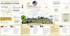 Colombia se une a Brasil, Chile y Argentina en lucha contra el glifosato