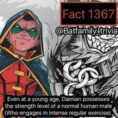 Batman Facts, Superhero Facts, Damian Wayne, Batwoman, Nightwing, Bat Joker, Gotham Villains, Bat Boys, Batman Family