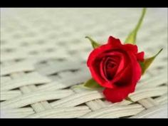 It can appear relatively normal to use flowers as tea ingredients and rose petals been used for centuries in culinary. How do edible rose petals taste? Good Morning Honey, Good Morning Images, Good Morning Quotes, Red Rose Flower, Red Roses, Nice Flower, Black Roses, A Rose For Emily, Cute Love Quotes For Him
