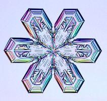 Snowflake Photographs by Kenneth G. Libbrecht - SnowCrystals.com