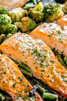 Garlic Butter Baked Salmon - Tender baked salmon brushed with a delicious garlic. - Garlic Butter Baked Salmon – Tender baked salmon brushed with a delicious garlic butter sauce and - Delicious Salmon Recipes, Fish Recipes, Seafood Recipes, Cooking Recipes, Healthy Recipes, Dinner Recipes, Oven Salmon Recipes, Salmon Belly Recipes, Salmon Meals