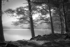 """""""Loch an Eilein"""" by Dorit Fuhg // by Loch an Eilein, Rothiemurchus near Aviemore, Cairngorms, Scottish Highlands. // Imagekind.com"""