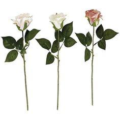 ROSA Rosa 40cm - Prodotti gradevoli per la casa e il giardino   CASA ❤ liked on Polyvore featuring accessories
