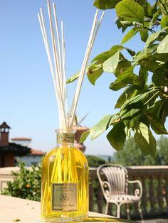 LIMONAIA Dr. Vranjes LIMONAIA двадцать седьмой аромат в коллекции Доктора, своеобразный реверанс парфюмерной моде выполненный в лучших традициях.   Сложный букет состоит из обжигающего аромата жженой цедры, маслянистого, обволакивающего аромата лимонной травы и горькой мяты. Этот аромат растекается как густой мед, оставляя необыкновенный шлейф сладко-горьких и цветочно-лимонных ноток.  #homefragrance #drvranjes #imagineparfum