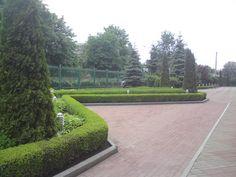Городское озеленение, озеленение административных зданий от БИОСФЕРА-Л