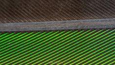 Feather. .  #tinahetlandphoto #longexposure #Nature #AllNatureShots #NatureLover #NatureShot #animazing_nature #world_bestnature #whywelovenature #jaw_dropping_shots #wonderful_places #ilovescandinavia #Norway #norges_fotografer #southnorway2day #norway2d