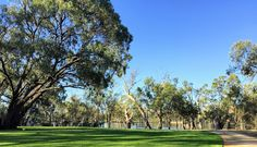 Anything and Everything about the Murray River Murray River, Cancer Rising, Golf Courses, Sign, Signs