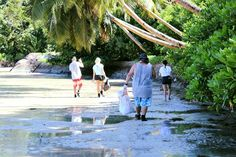 Our Seychelles volunteers spent the day doing a massive beach clean with SYAH as part of the Marine Debris Challenge. Well done to everyone involved! Marine Conservation, Wildlife Conservation, Marine Debris, Personal And Professional Development, Clean Beach, Volunteer Abroad, Volunteers, Seychelles, Oceans