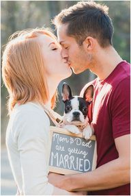 Lindsey, Ian, and Olive the Boston Terrier engagement session!
