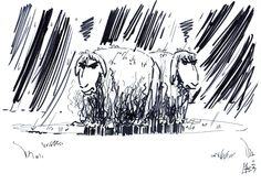 In 2007 I had a discussion with someone who owned sheep. It was about the fact that he let the sheep out in the meadow to eat grass, no matter the weather, rain or sunshine. He hadn't built a shed so they could take shelter for the rain. He didn't care for it; those animals don't care, he said. At that moment this picture popped in my head, imagining that he might not be right as far as these grumpy sheep are concerned. #art #artwork #drawing #tekening #pen #ink #inkt #penandink #peneninkt…