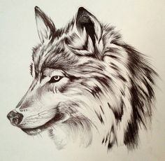 Most popular tags for this image include: wolf, art, black and white and drawing - My list of the most creative tattoo models Wolf Drawing Easy, Anime Wolf Drawing, Drawing Drawing, Drawing Ideas, Wolf Face Tattoo, Wolf Tattoos Men, Wolf Tattoo Design, Pencil Art Drawings, Animal Drawings