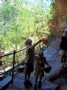 Everything you need to know about hiking in Zion Canyon, Zion National Park.