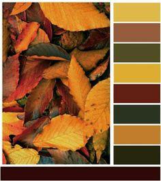 Nill de tudo um pouco: Cartela de cores da natureza na decoração Fall Color Schemes, Color Schemes Colour Palettes, Red Colour Palette, Paint Color Schemes, Color Combos, Apartment Color Schemes, Bathroom Color Schemes, Color Scale, Design Seeds