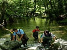 Pollino National Park. Water trekking