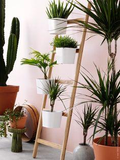 SATSUMAS planteringsstege med 5 krukor, bambu/vit, design Johanna Asshoff.