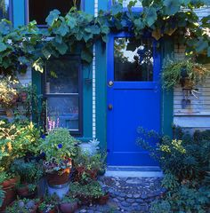 I am thinking of painting the outside of my kitchen doors, which lead to the garden... cobalt blue door. LOVE this blue.