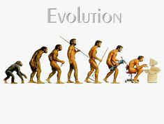 Figure le développement humain, Humain, évolutif, L'évolution De L'espèceImage PNG