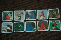 Male/Female Bird Matching - Lesson found in Week 12 Day 2 on JustMontessori.com