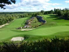 The golfclub where Batty and Jeffrey see mama Moose and her baby's.
