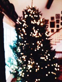 we don't half ass Christmas trees