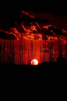ponderation:  Sunset by Nico54