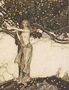 Arthur Rackham   Freya Goddess of Youth   1910