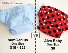 pocket diaper article : Alva baby is super cheap compared to bumGenius and is very similar