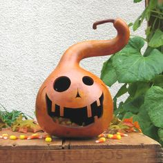 Great alternative to a pumpkin!