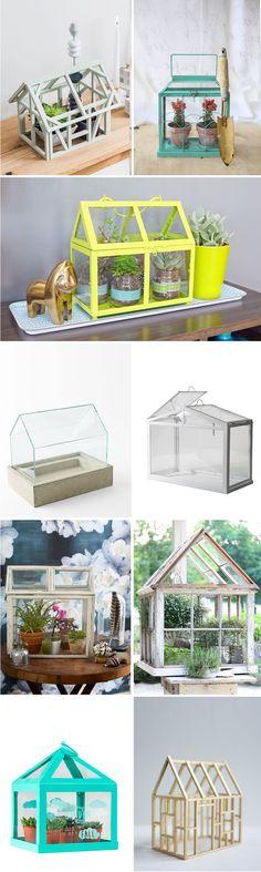 Inspiración: Mini invernaderos