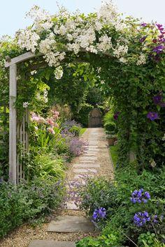Schöne Bögen Mit Weißen Blumen, Blaue Blumen Am Boden, Gartenweg Mit Stein  Und Kies