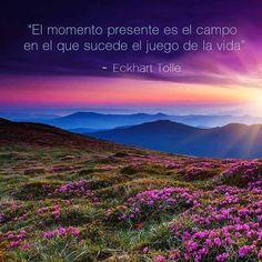 Eckhart Tolle, Great Quotes, Insight, Nature, Travel, Spiritual Awakening, Country, Spirituality, Life