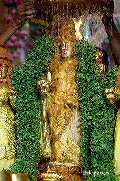 Tirumala Tirupati Devasthanams(TTD)