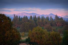 Alpenglow over the Sierras.