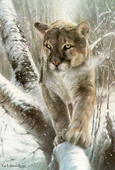 Big Love, Online Gallery, Limited Edition Prints, Beautiful Cats, Big Cats, Deer, Original Artwork, Wildlife, Artsy