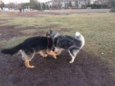 Hannah and Pande at Shell  Park! :)
