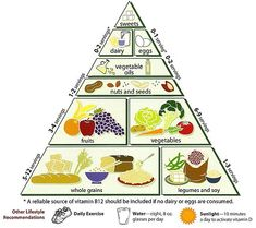 Vegetarian diets benefits and disadvantages