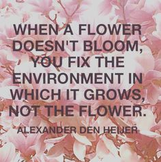 Quote - When a flower doesn't bloom