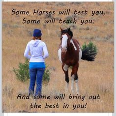 True - Terminator Funny - True Terminator Funny Terminator Funny Meme True The post True appeared first on Gag Dad. The post True appeared first on Gag Dad. Rodeo Quotes, Cowboy Quotes, Equestrian Quotes, Horse Sayings, Western Quotes, Racing Quotes, Equestrian Problems, Cute Horses, Horse Love