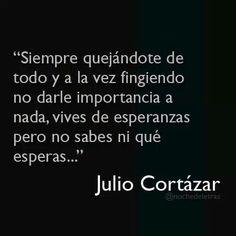 Julio Cortazar Aniversario 26/8