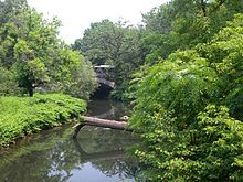 Bronx River in the Bronx of course!