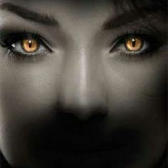 Werewolf Contact Lenses imitate actual wolf eyes, and can make you appear spooky, creepy or just fantasy like as the case may be. Realistic Eye Drawing, Golden Eyes, Human Eye, Photoshop Tips, Jolie Photo, Eye Art, Beautiful Eyes, Fantasy Characters, Eye Color