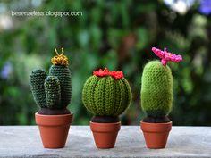 Handcraft World: Amigurumi cactus Fake Cactus, Mini Cactus, Cactus Flower, Cactus Plants, Cacti, Cactus Amigurumi, Crochet Cactus, Amigurumi Doll, Cactus Images