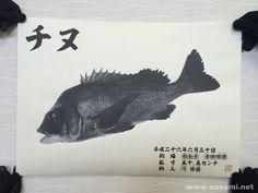 デジタル魚拓サービス 魚墨で作成したチヌの墨魚拓です。   It is a sumi fish print of a striped black porgy. www.uosumi.net/