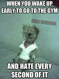 Image in Funny Fitness collection by tight tummies Workout Memes, Gym Memes, Funny Memes, Hilarious, Funny Gym, Memes Humor, Funny Stuff, Funny Quotes, Funny Humour