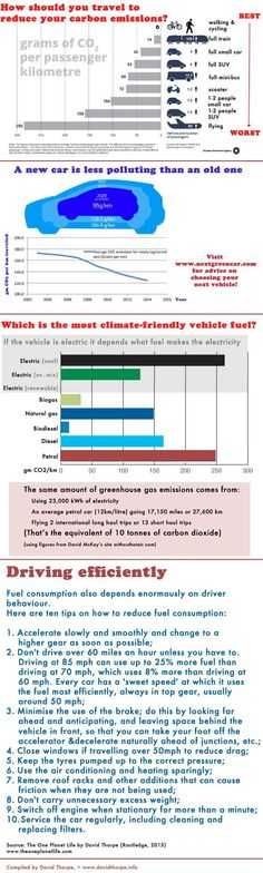 How to reduce the carbon emissions impact of travel Infographic